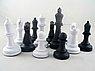 Шахматы гроссмейстерские пластмас