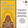 СД Namaste - Индийский массаж головы