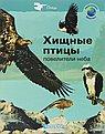 Хищные птицы-повелители неба